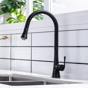 Warum Sie in eine hochwertige Wasserhahnküche investieren sollten